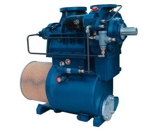 Aerzen G5 Delta Screw Compressor Aerzen Machines Esi