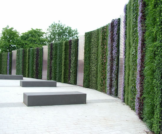 Pin wall systems on pinterest for Living wall systems