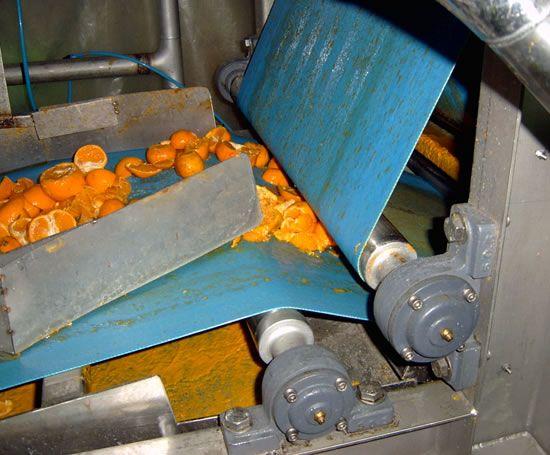 Ace high pressure belt press - juice processing