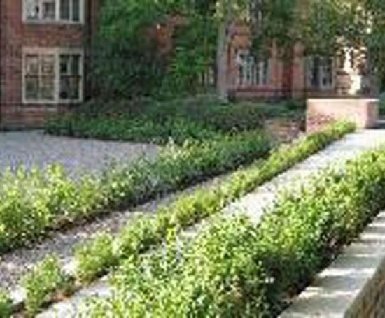 Hard landscaping bromsgrove school blakedown landscapes for Hard landscaping