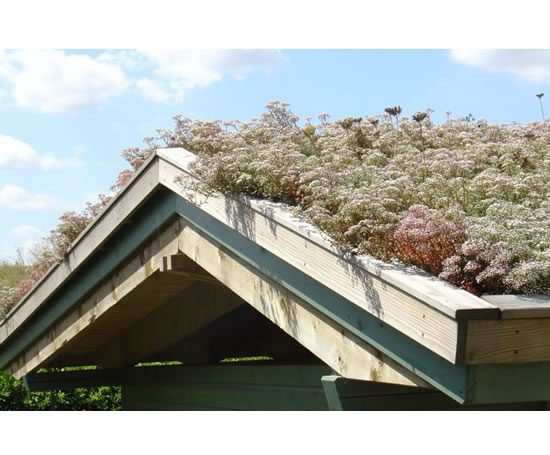 Butyl green roof liners butyl products esi building design for Sustainable roof materials