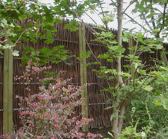 Green Barrier™ screen in woven willow with shrubs