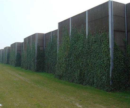 Greenscreen Acoustic Barriers Livingreen Design Esi