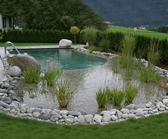 Natural Swimming Pools Clear Water Revival Esi