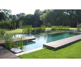 Natural Swimming Pools Clear Water Revival Esi