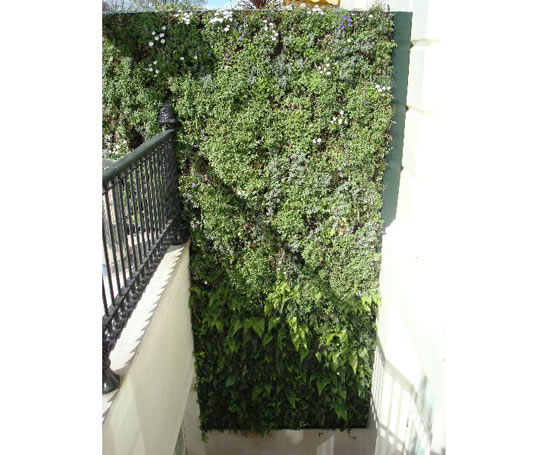 Ans modular living wall systems greenwood urban esi for Living wall systems