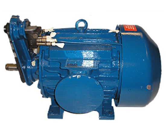 Industrial Blowers Product : Biogas compressors industrial blower services esi