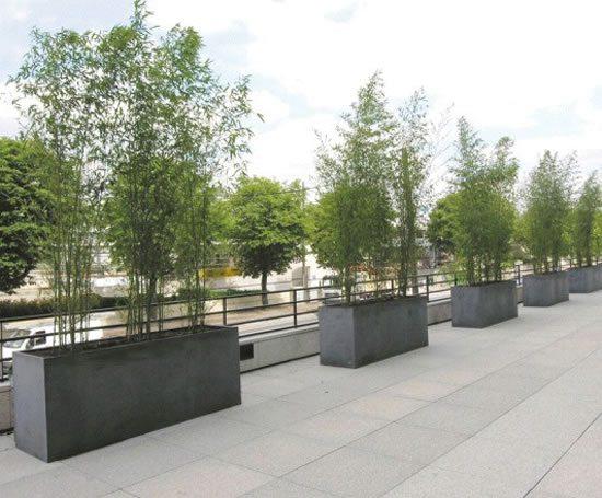 Barrier planter