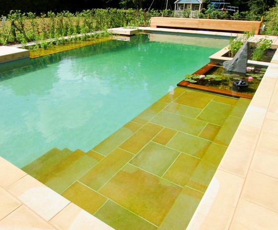 Natural swimming pool and koi pond   Clear Water Revival ...