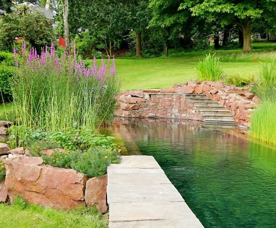 Natural swimming pool, Bristol | Clear Water Revival | ESI ...