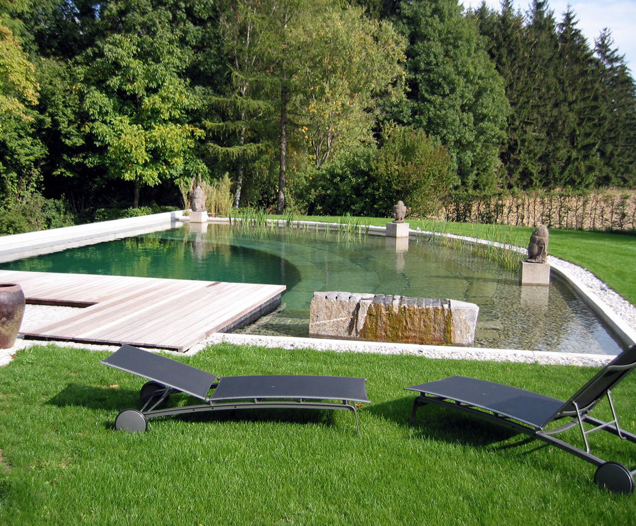 Natural swimming pool design and construction services ...