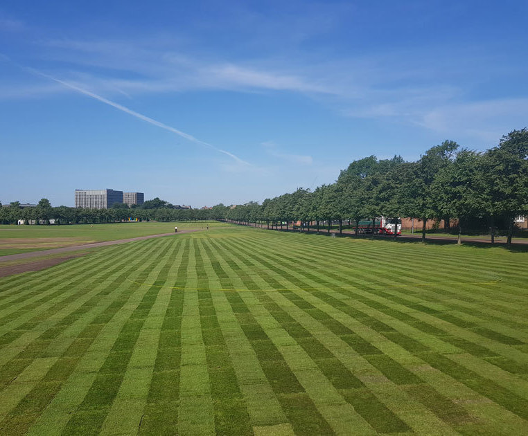 Re-turfing a 550 year old park - Glasgow Green