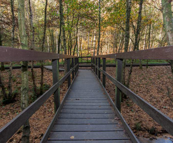 Newmillerdam Country Park trail made from hanit® decking