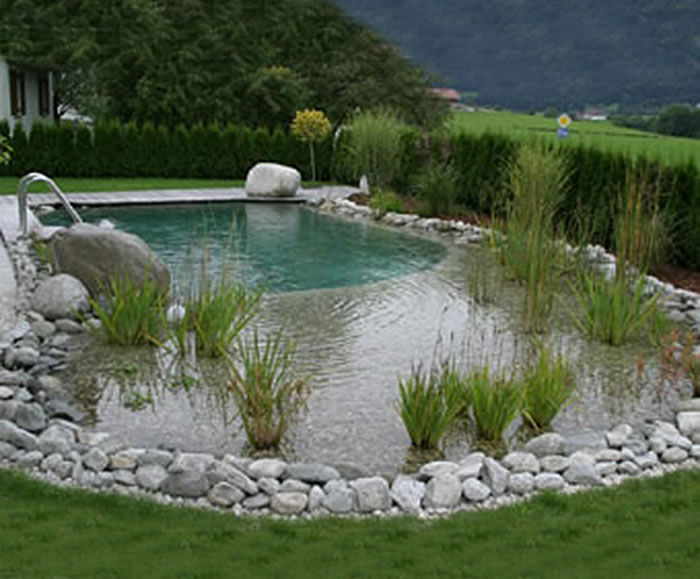 Natural swimming pools | Clear Water Revival | ESI External ...
