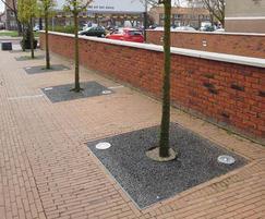 Tree Air® Spot