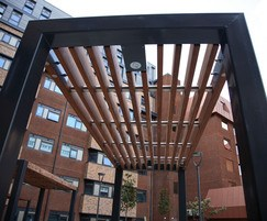 Bespoke architectural canopy