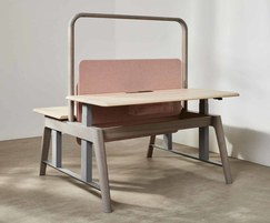 Sage sit-stand desk with sycamore top and ash legs