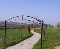 Bespoke metal garden arch from Paddock Fencing