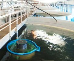 RAS fish farm, Dalsfjord