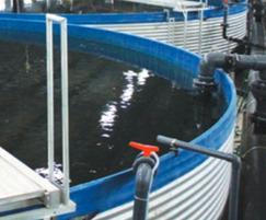 RAS fish farm, Valperca