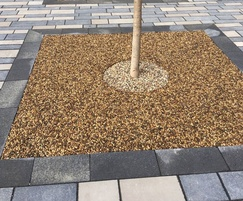 GeoPave resin bound surfacing system for tree pits
