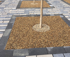 Porous resin bound paving makes it ideal for tree pits