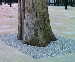 Addastone TP tree pit - London