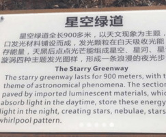 Starry Greenway cycle path in Shenzhen City