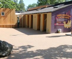 525m2 Addaset Pecan resin bound paving for zoo