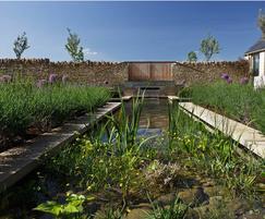 Cruciform lily pond