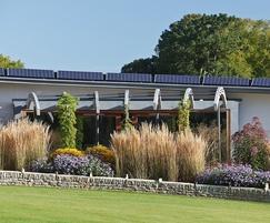 Contemporary walled garden, Cheltenham