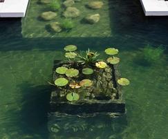 Lily planter