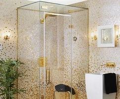 Vetro steam room and shower enclosure