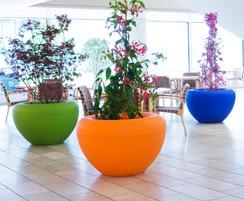 A selection of solid colour SCOOP planters