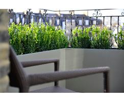 4th floor Master Bedroom terrace