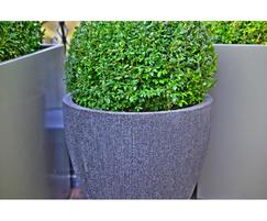 IOTA's Radial planters were also used on the project