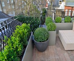 Bespoke planters, Hans Place, Knightsbridge, London SW1