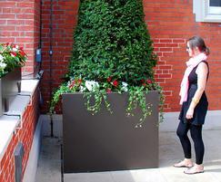The Kia Oval – L1200 x W1200 x H1000mm tree planter