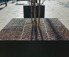 Steel tree planters manufactured bespoke for Cheltenham