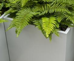 Zintec steel planters from IOTA