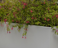 Bespoke steel planters for University courtyard