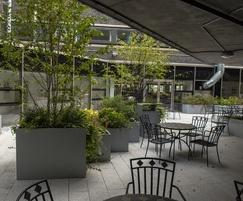 Zintec steel planters - City, University of London