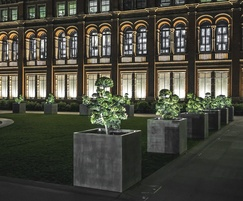 Tree planters illuminated at night