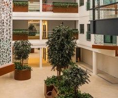 Large bespoke steel planter - organic shape