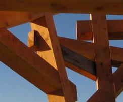 Crows Nest douglas fir detail