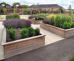 SPL305 planter, Finchley Memorial Hospital