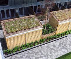 Sedum roofed Sheldon cycle shelter