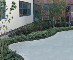 Trees / shrubs, Bradley Stoke Community School, Bristol