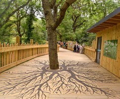 Natural-themed boardwalk at Bear Woods, Bristol