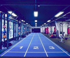 Primal Gym functional training area